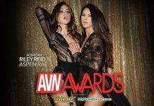 2017 AVN & XBIZ Awards Nominees