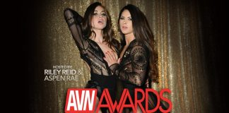 2017 AVN & XBIZ Awards Nominees