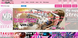 Adult Festa VR English Website